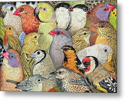 Patchwork Birds Metal Print
