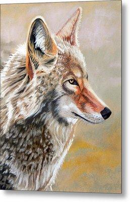 Patchwork Coyote Metal Print by Tanya Provines