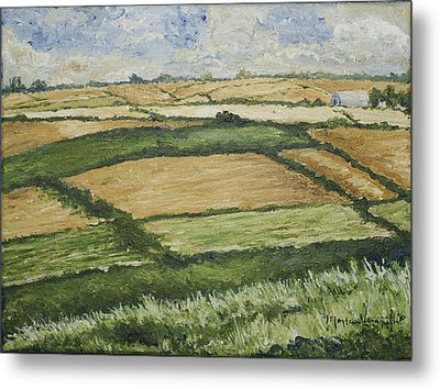 Patchwork Fields Metal Print by Monica Veraguth