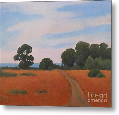 Path At Carpinteria Bluffs Metal Print by Jennifer Boswell