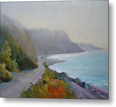 Path - Dallas Road Beach Metal Print by Ron Wilson