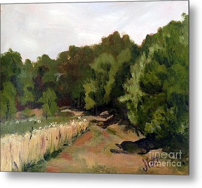 Path In The Field Metal Print by Janet Felts