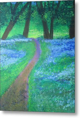 Path In Woods Metal Print by Diana Riukas