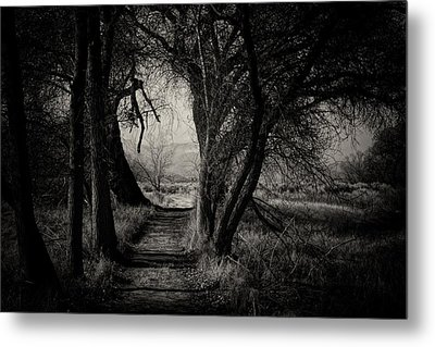 Path- Kern River Preserve Metal Print