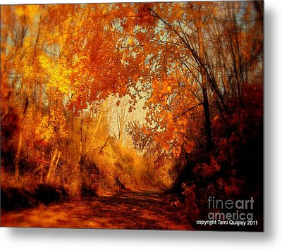 Path Of Gold Metal Print by Tami Quigley