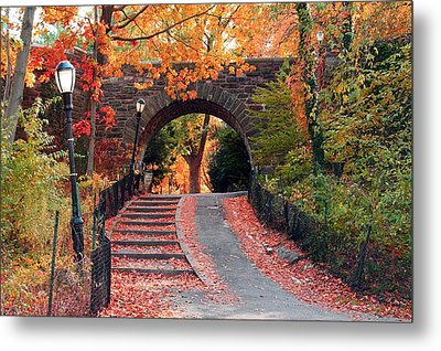 Path Of Leaves Metal Print