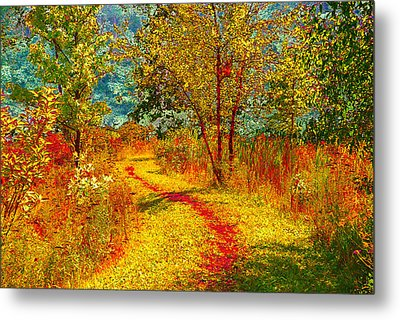 Path Through The Woods Metal Print