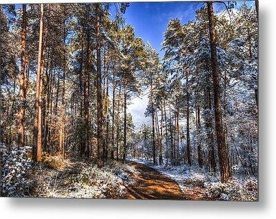 Path Throw The Snow Metal Print by Marc Garrido