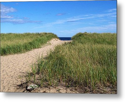 Path To Heaven Metal Print by Brenda Burns