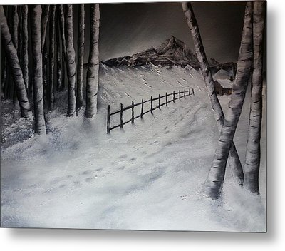 Path To Solitude Metal Print by Valorie Cross