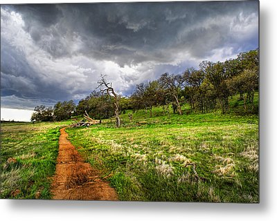 Path To The Clouds Metal Print