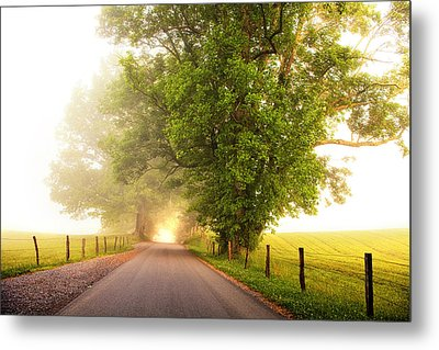 Path To  The Fog Metal Print by Andrew Soundarajan