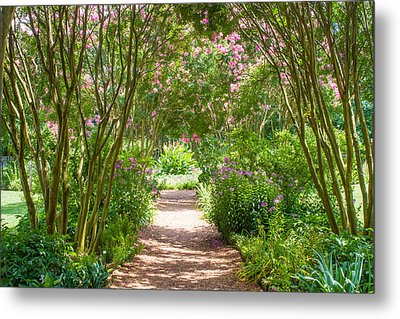 Path To The Garden Metal Print