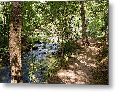 Metal Print featuring the photograph Pathway Along The Springs by John M Bailey