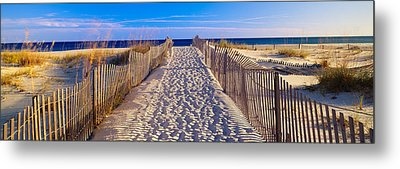 Pathway And Sea Oats On Beach At Santa Metal Print by Panoramic Images