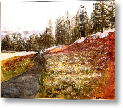 Pathway In The Tetons Metal Print by Larry Farris