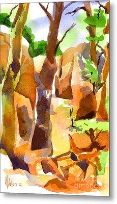 Pathway Through Elephant Rocks 1b Metal Print by Kip DeVore