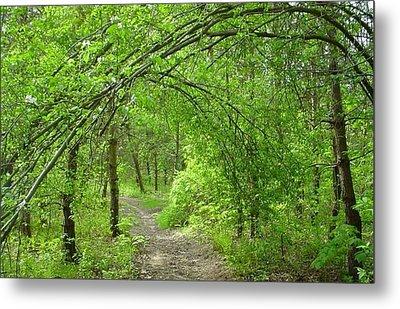 Pathway Through Nature's Bower Metal Print