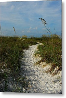 Pathway To The Sea Metal Print by Mel Steinhauer