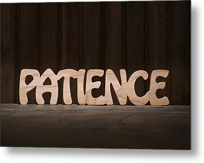 Patience Metal Print by Donald  Erickson