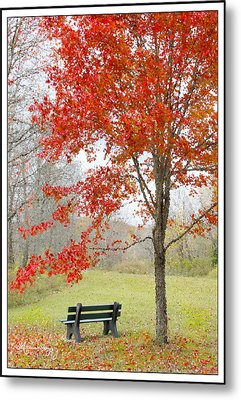 Metal Print featuring the photograph Patiently Waiting by Mariarosa Rockefeller