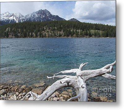 Patricia Lake - Jasper Metal Print by Phil Banks