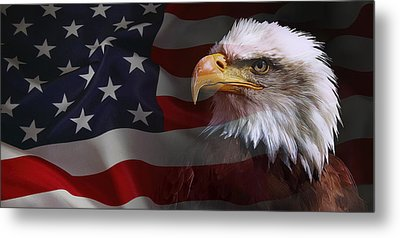 Patriot United States Metal Print by Daniel Hagerman