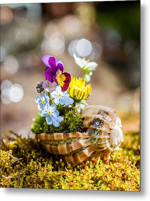 Patterns In Nature Metal Print by Aaron Aldrich