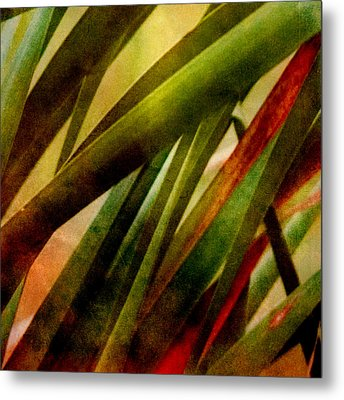 Patterns In Nature No.3 Metal Print by Bonnie Bruno