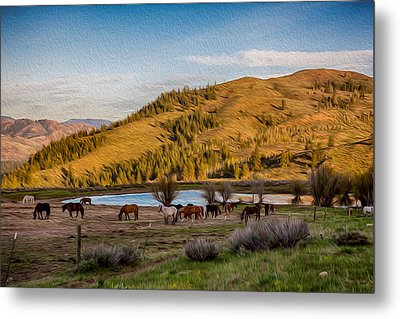 Patterson Mountain Afternoon View Metal Print by Omaste Witkowski