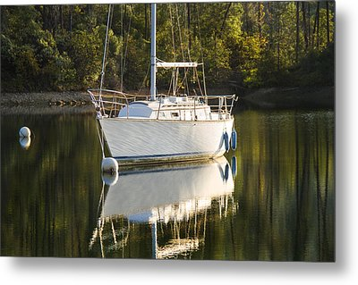 Metal Print featuring the photograph Pause by Randy Wood
