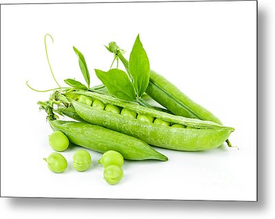 Pea Pods And Green Peas Metal Print by Elena Elisseeva