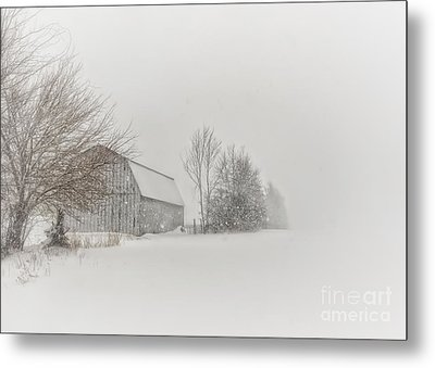 Peace And Quiet Metal Print by Pamela Baker