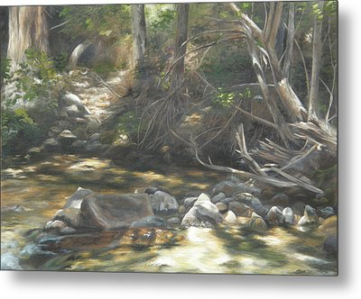 Metal Print featuring the painting Peace At Darby by Lori Brackett
