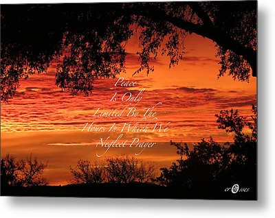 Peace At Last Metal Print