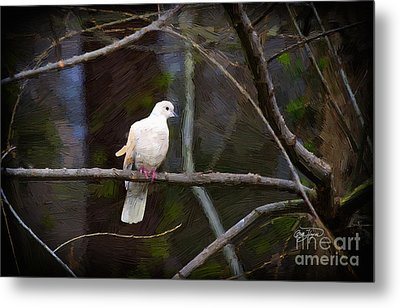 Peace Be With You Metal Print by Cris Hayes