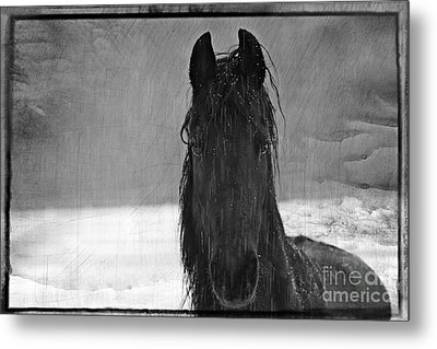 Peace In The Storm Metal Print