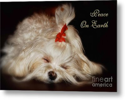Peace On Earth Metal Print by Lois Bryan