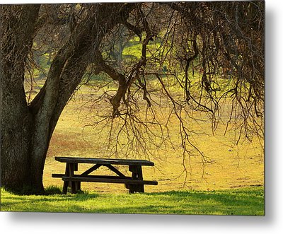 Peace  Metal Print by Rima Biswas