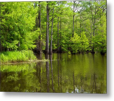 Peaceful Afternoon Metal Print by Ester  Rogers