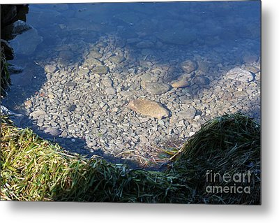 Peaceful Bay Metal Print