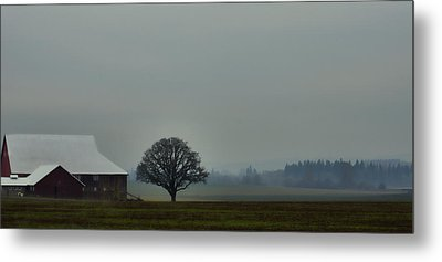 Peaceful Country Morning Metal Print