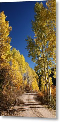 Peaceful Fall Road Metal Print by Michael J Bauer