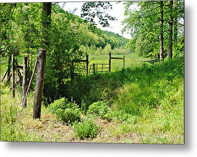 Peaceful Field Metal Print by Stephanie Grooms