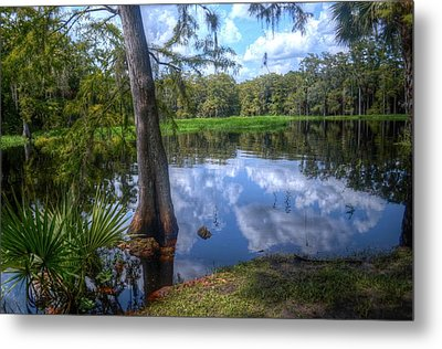 Peaceful Florida Metal Print by Timothy Lowry