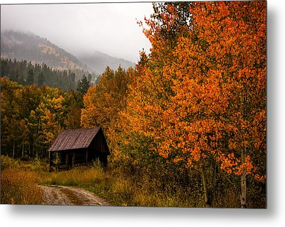 Metal Print featuring the photograph Peaceful by Ken Smith