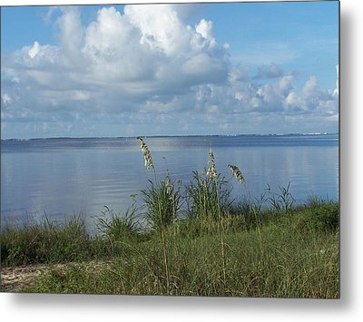 Peaceful Metal Print by Michele Kaiser