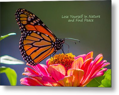 Peaceful Nature Metal Print by Marion Johnson
