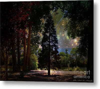 Magical Night At The River Metal Print
