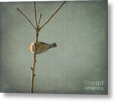 Peaceful Perch Metal Print